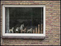 images/stories/20060501_Holandia/800_P1020825_Okno.JPG