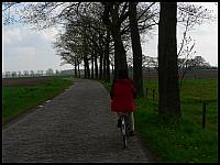 images/stories/20060502_Holandia/800_P1030204_Drozka.JPG